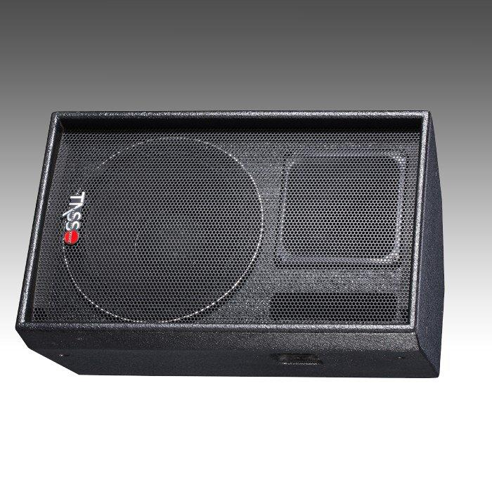 Stage Monitor Economical LPS12
