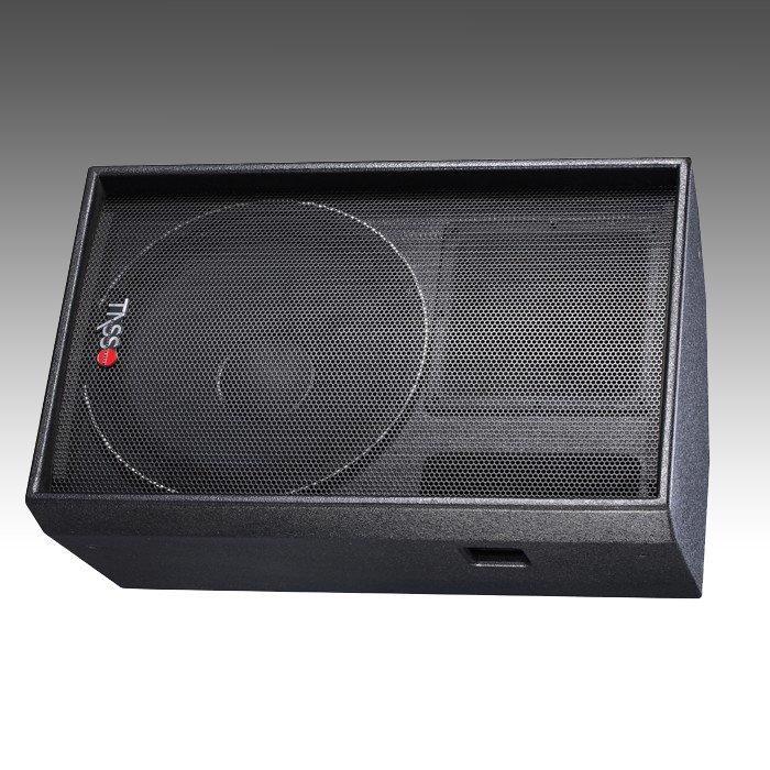 Stage Monitor Economical LPS15