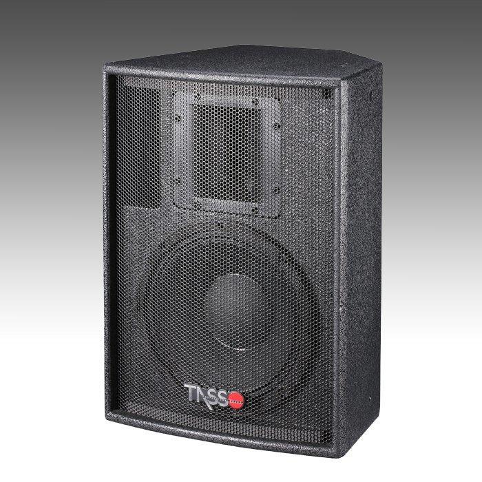 Big Power Installation Speaker CT100