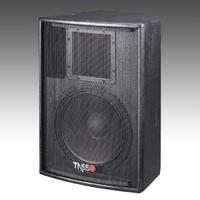 Big Power Installation Speaker CT300