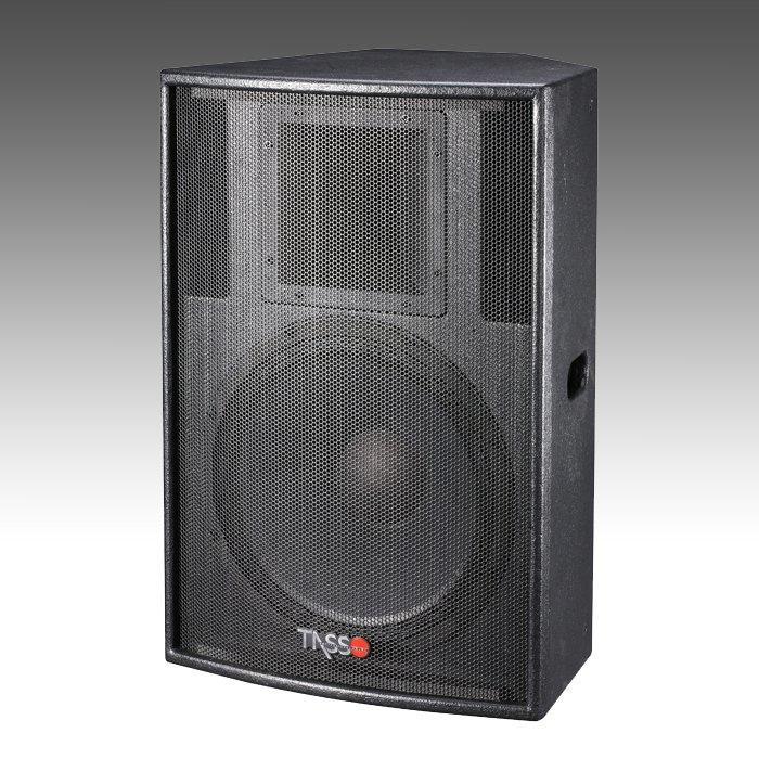 Big Power Installation Speaker CT500