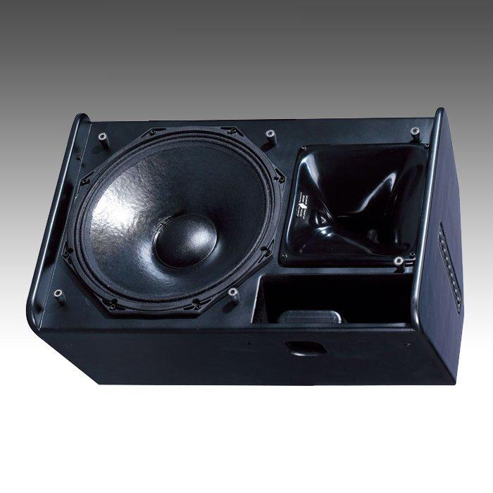 Professional Stage Monitor PS15