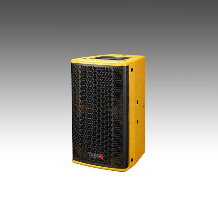 10 Inch 2-Way Full Range Loudspeaker System KV10